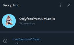 OnlyFansPremiumLeaks