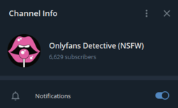 Onlyfans Detective