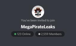 MegaPirateLeaks