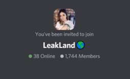 Discord Server LeakLand