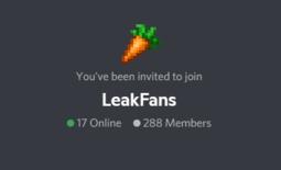 LeakFans